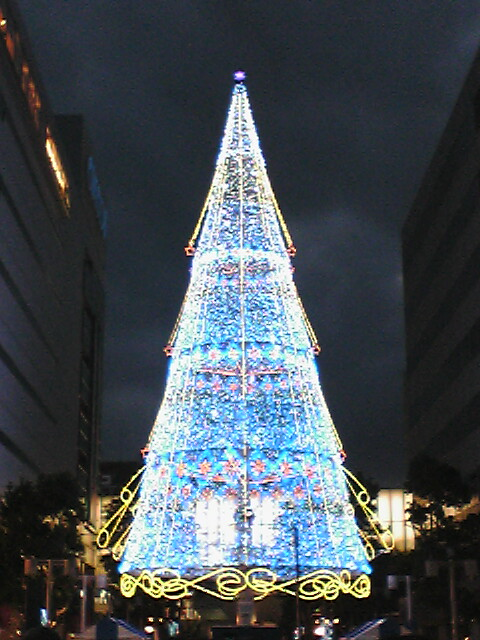 冬の蛍(11/15<br />  )