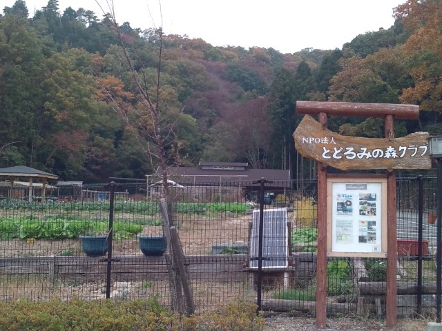 大阪府が進める「家・庭一体のすまいづくり」